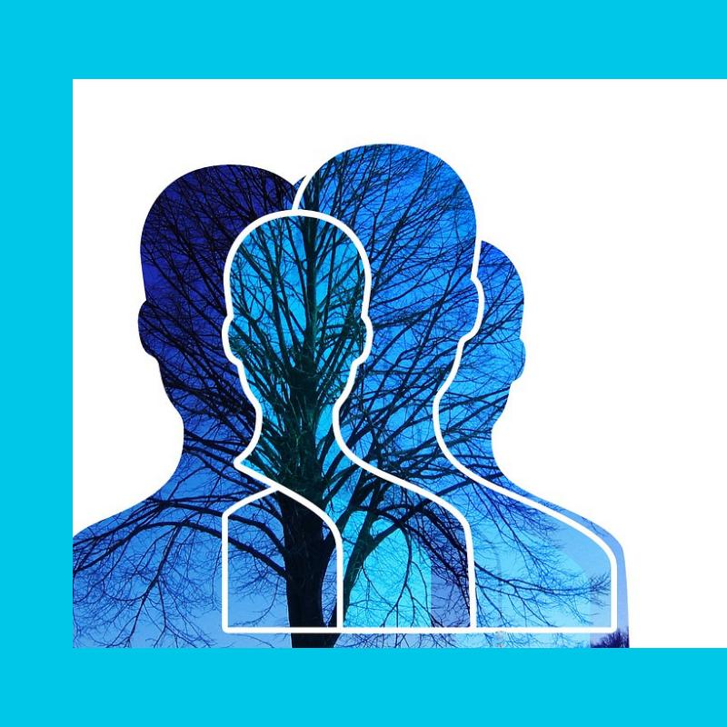 La como vascular prevenir demencia